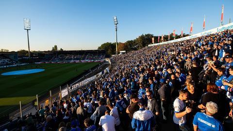 Darmstadt Fans