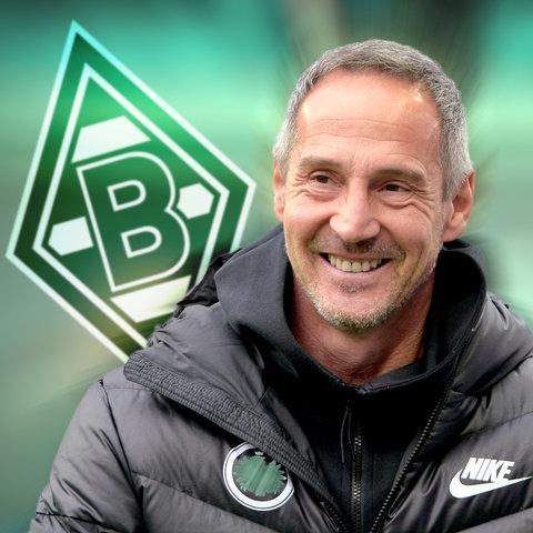 Collage: Eintracht-Trainer Adi Hütter im Vordergrund, das Logo von Borussia Mönchengladbach im Hintergrund.