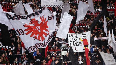Rhode Fans