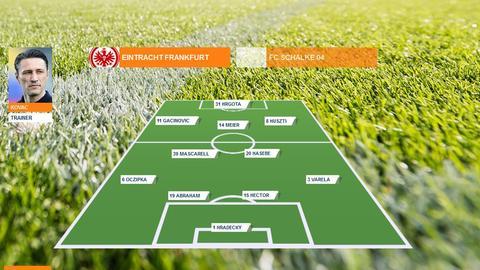 Spielerzeugnis Eintracht Schalke