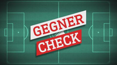 Gegnercheck TSG Hoffenheim