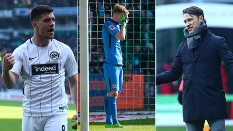 Collage: Jovic, Hradecky und Kovac