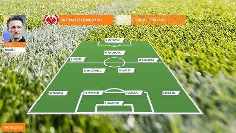 Spielerzeugnis Hamburg Eintracht