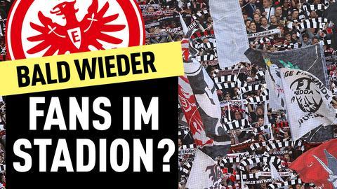 Thumbnail Fans Eintracht