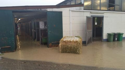 Überschwemmungen auf der Reitanlage in Kriftel im Sommer 2018