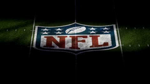Das Logo der NFL auf dem Spielfeld in Tampa Bay