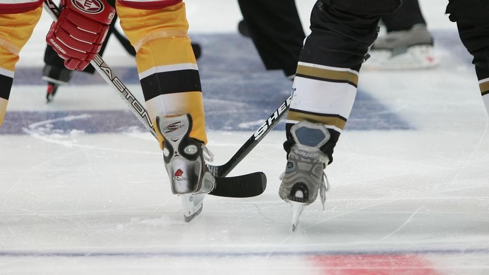Eishockey Del Ergebnisse