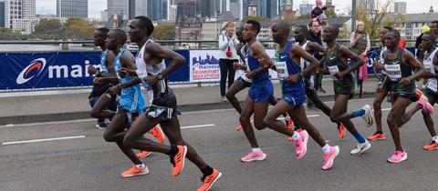 Die Läufer beim Frankfurt Marathon
