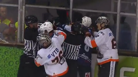 Eishockey Huskies gegen Löwen