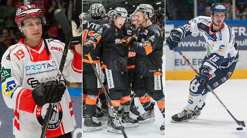 Collage: Eishockey-Spieler aus Bad Nauheim, Frankfurt und Kassel