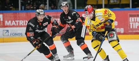 Die Löwen-Spieler Leon Hüttl (Rückennummer 25) und Daniel Wirt (76) sind hier im Duell mit dem Tölzer Löwen Marco Pfleger.