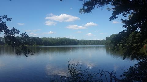 Der See in Kienbaum glitzert in der Sonne.