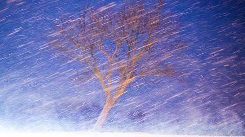 Eisregen und Schneegestöber in der Dämmerung