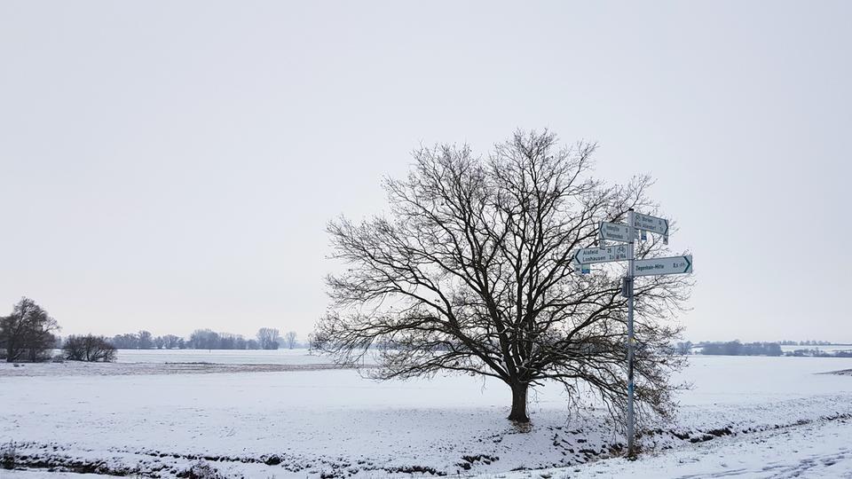 Weitblick in weißer Landschaft