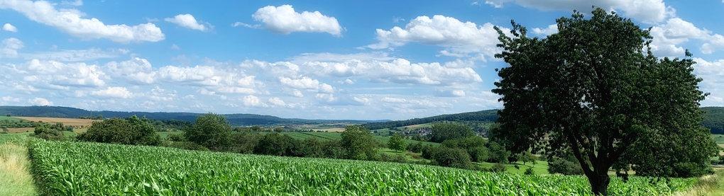 Wette Darmstadt
