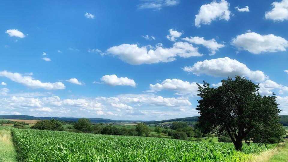 Blauer Himmel mit aufgelockerter Bewölkung