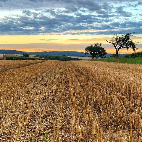 Auf dem Weg zur Arbeit, auf der Höhe in Büdingen-Rohrbach, hat Astrid Nagel den Sonnenaufgang mit ihrer Kamera eingefangen.