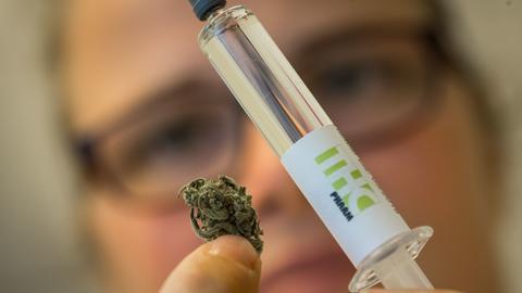THC Pharm