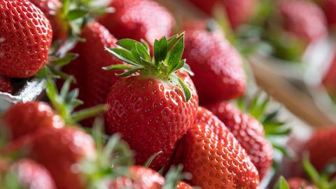 Erdbeeren in Großaufnahme