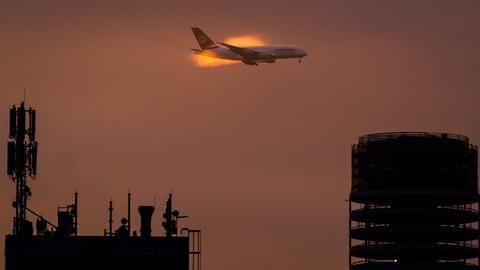 Airbus in Morgendämmerung im Landeanflug auf Frankfurt
