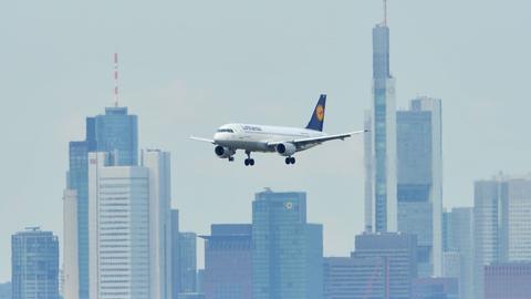 Flugzeug Frankfurt Lufthansa Sujet