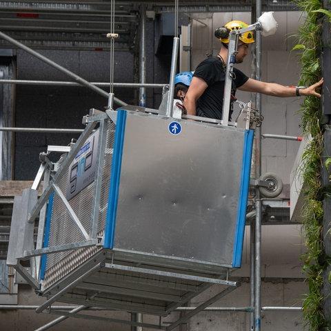 """Ein Arbeiter an den vertikalen Grünflächen des """"Eden""""-Towers in Frankfurt."""