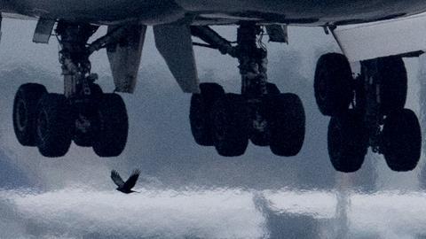 Boeing bei der Landung in Frankfurt