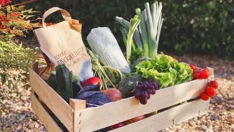 Gemüsekiste von Mainbauer