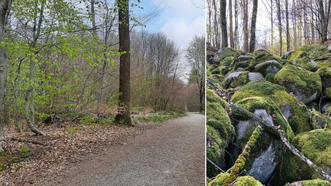 Bildkombo: Kleines Felsenmeer und Schutzwald bei Heppenheim