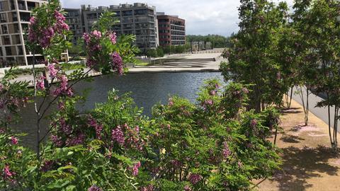 Blick auf den Hafenplatz vom Blauen Kran aus.