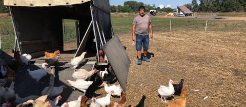 Landwirt Siegbert Ochsenschläger aus Biblis mit seinen Hühnern