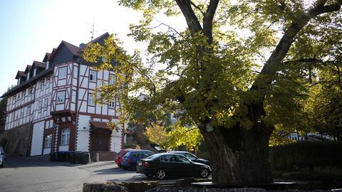 Blick auf die mehr als 600 Jahre alte Dorf- und Gerichtslinde und das historische Rathaus im osthessischen Nentershausen (Landkreis Hersfeld-Rotenburg).