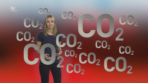 CO2-Grafik mit Janine Hilpmann