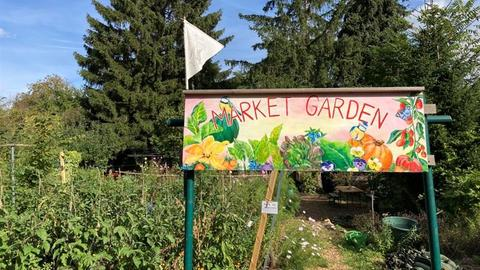 """Eingang zu einem Gemüsegarten oberhalb des Frankfurter Günthersburgparks, Tor mit Aufschrift """"Market Garden"""""""