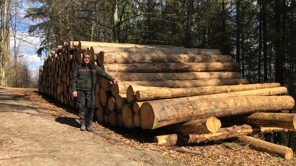 Förster Christian Korff lehnt sich an einen großen Stapel mit Baumstämmen