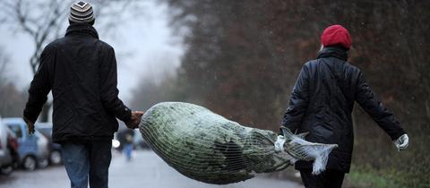 Ein Mann und eine Frau tragen einen Weihnachtsbaum nach Hause.