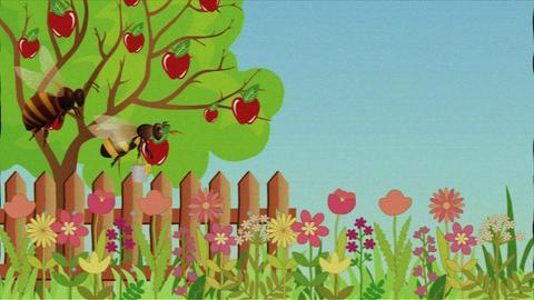 Fleißige Hummel, faule Biene - Hummeln besuchen deutlich mehr Blüten in der gleichen Zeit