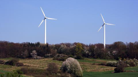 Windkraftanlage in einem Wald bei Raibach (Darmstadt-Dieburg)